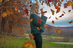 Woman In Teal Knit Sweater Under Maple Tree royalty free stock photo