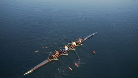 Woman team sport rowing. Woman team train the sport rowing on the river in the morning,top view point stock video footage