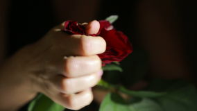 Woman tears off petals of a rose. angry upset destroys flower girl