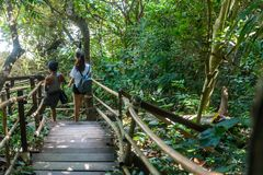 Woman and teen walking on wooden pathway stock photos