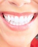 Woman teeth Stock Photography