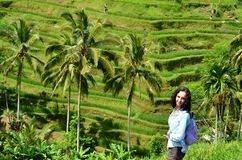 Woman in Tegalalang Rice Terrace. Tegalalang Rice Terrace Bali Indonesia Royalty Free Stock Photography