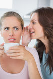 Woman telling secret to her friend while drinking coffee Royalty Free Stock Images
