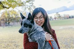 Woman Tenderly Hugging and looking at her Pet Australian doggy. Woman Tenderly Hugging and looking at her Pet Australian cattle dog, black and grey color, in royalty free stock photography