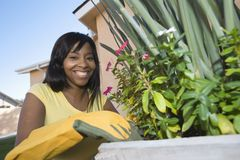Woman Tending Plants. Portrait of a happy African American tending plants Stock Photos