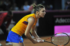 Woman tennis player Simona Halep during a game. CLUJ-NAPOCA, ROMANIA - APRIL 16, 2016: WTA 6 ranked woman tennis player Simona Halep plays against Andrea Royalty Free Stock Images
