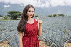 With woman and tequila Stock Photography