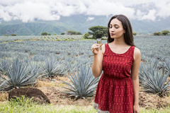 Woman and tequila Stock Images