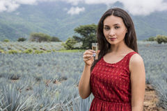 Woman and tequila Royalty Free Stock Image