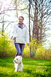 Woman with terrier Royalty Free Stock Photos