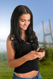 Woman Texting on a Phone Stock Photography