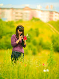 Woman texting touching cell phone outdoor on meadow Stock Photos