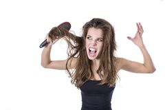 Woman with thick brown tangled hair try to comb hairs but fail. hair healt concept. Woman with thick brown tangled hair try to comb hairs but fail. hair healt stock photography