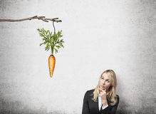 Woman thinking about reward. A young pretty woman with her hand on chin looking up at a painted carrot tied to a branch. Concrete background. Front view. Concept Royalty Free Stock Images