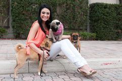 A woman and three dogs Stock Images