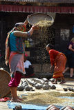 Woman threshing grain in traditional way in Nepal Stock Photos