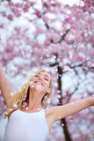 Woman throwing cherry blossoms Stock Image