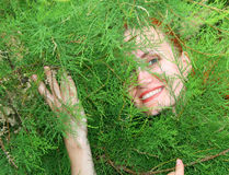 Woman in thuja tree Stock Photo