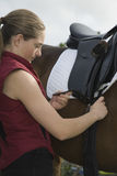 Woman Tightening Saddle On Horse Royalty Free Stock Images