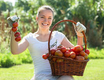 Woman with tomato harvest in garden Stock Images