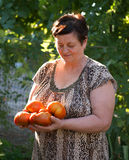 Woman with tomatoes in the garden Stock Photos