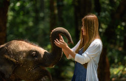Woman touch elephant with all her heart Stock Photo