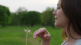 Woman touch fingers flower on dandelion seed head and blow, floret fly away. Smiling Woman touch fingers flower on dandelion seed head and blow, floret fly away stock footage