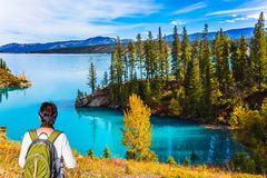 Woman with a tourist backpack. Middle-aged woman with a large tourist backpack admires the lake. Abraham Lake in the Rocky Mountains of Canada.Concept of active royalty free stock image