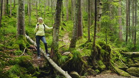 A woman is a tourist in the forest. He rests near the tree, admiring the beautiful view. Active lifestyle. 4K video stock video footage
