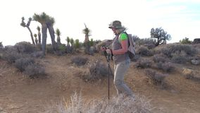 Woman Tourist Goes On The Trail In The Mojave Desert, Amid The Cactus, Side View. Hiking a woman in sun-protective clothing with a backpack and trekking sticks stock video