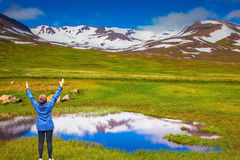 The woman-tourist in Iceland raised her hands Royalty Free Stock Photography
