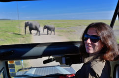Woman tourist on safari in Africa, car travel in Kenya, elephants in savanna. Woman tourist on safari in Africa, car travel in Kenya, watching elephants in Royalty Free Stock Photography