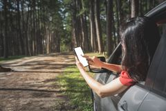 Woman tourist searching place from smartphone in car. While travelling in pine forest royalty free stock photo