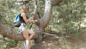 Girl tourist in the forest taking pictures of nature stock video footage