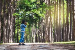 Woman tourist travel in forest stock image