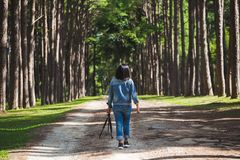 Woman tourist travel in forest royalty free stock images