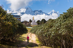 Woman tourist walks alley in Tengboche village, Nepal. Royalty Free Stock Photo
