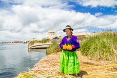 Woman in traditional indigenous clothing, Peru Stock Image
