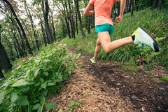 Woman trail running in green forest. Endurance sport. Young woman running in green forest. Endurance sport training. Female trail runner cross country running royalty free stock photo