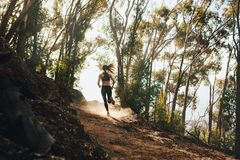 Woman trail running on a mountain path. Rear view of woman trail running on a mountain path. Runner working out in beautiful nature stock images