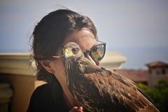 Harris Hawk pet woman trainer stock photos