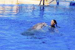 Woman trainer swimming with dolphins Royalty Free Stock Photos