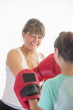Woman training with boxing gloves Stock Photography