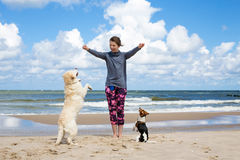Woman training dogs. On the beach Royalty Free Stock Photos