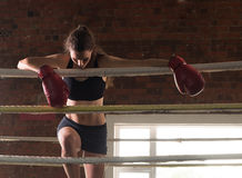 Woman training gym boxing mma ring shadow boxing mixed martial a royalty free stock photos