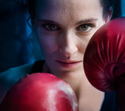 Woman training gym boxing mma ring shadow boxing mixed martial a royalty free stock photo