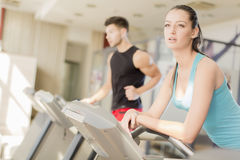 Woman training in the gym Royalty Free Stock Image