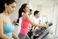 Woman training in the gym. Young women training on a cross trainer Royalty Free Stock Photo