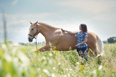 Woman training her horse stock photo