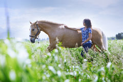 Woman training her horse royalty free stock photo